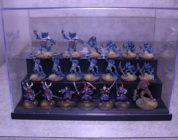 Miniatures Display Case