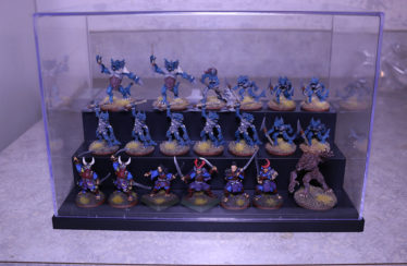 Miniatures Display Case